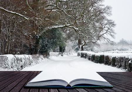 Winter Reading – Lectura de invierno